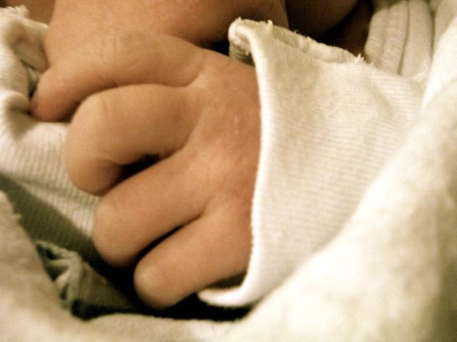 Charlotte's Little Fingers