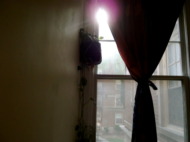 morning window