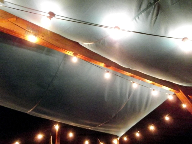 Canopy lights