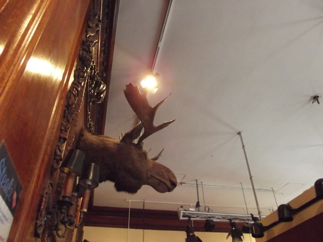 moose at cheers